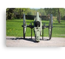 field cannon Metal Print