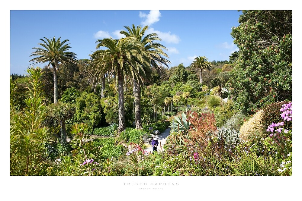 Tresco Gardens, Isles of Scilly by Andrew Roland
