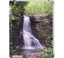 Gentry Creek Falls iPad Case iPad Case/Skin