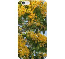 Yellow Poinciana Tree | iPhone/iPod Case iPhone Case/Skin