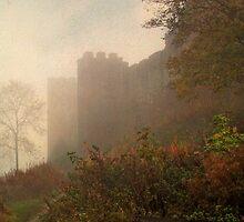 Castle by Simon Harris