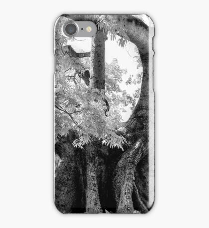 Cotton Tree | iPhone/iPod Case iPhone Case/Skin