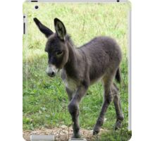 Donkey Colt iPad Case iPad Case/Skin