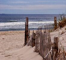 Lavallette by Debra Fedchin