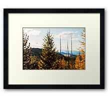 White Mountain Fire Outlook with Fall Colors Framed Print