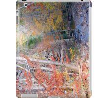 Beaver Dam Creek iPad Case iPad Case/Skin