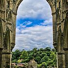 Rievaulx Abbey View by Colin Metcalf