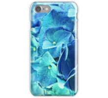 summerfeeling iPhone Case/Skin