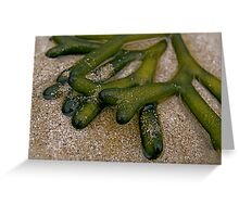 Green Seaweed Greeting Card