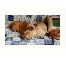 pups! Art Print