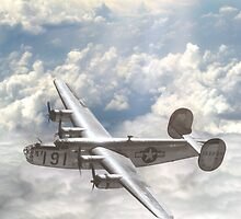 B-24 Liberator by Need4Speed