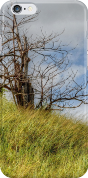 Lonely Tree   iPhone/iPod Case by Jeremy Lavender Photography