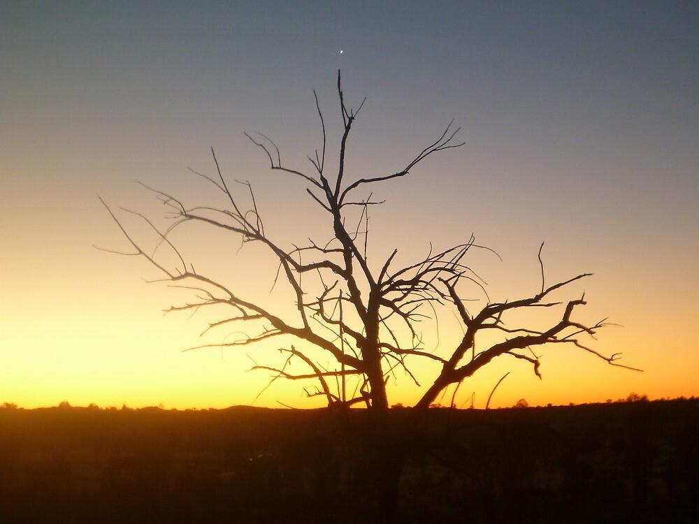 The Tree of Venus by GorgeousPics