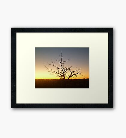 The Tree of Venus Framed Print