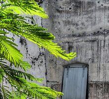 The Hidden Window | iPhone/iPod Case by 242Digital