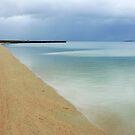 Whitemark Beach Flinders Island  by Andrew  Makowiecki