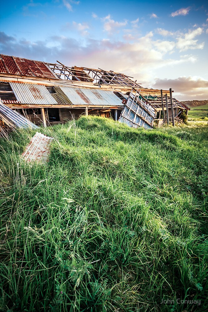 Grass to the roof by John Conway