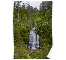 Little Aire Falls, Great Otway National Park Poster