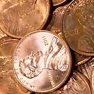 US Penny Coin Background by Diana Beato