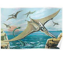 Pteranodon Poster