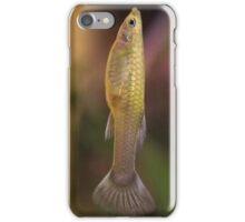 Tropical 14 iPhone Case/Skin