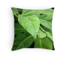 Rain Drops On Leaves Throw Pillow