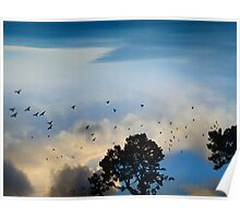Skies over Stow Lake Poster