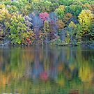 Fall's Colour Pallet by Geno Rugh