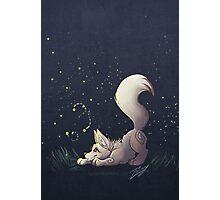 Firefly Fox - White Photographic Print