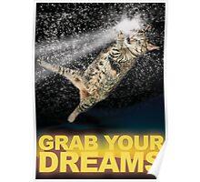 Grab Your Dreams! Poster