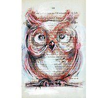 """""""Owl"""" Photographic Print"""
