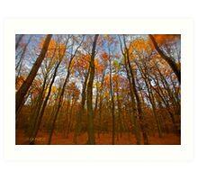 Autumn  - My wonderful Galicia by Andrzej Goszcz. Featured 5 star Excellence Valerie Anne Kelly. Art Print