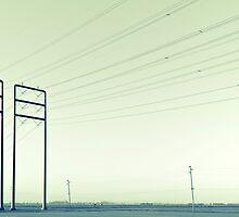 Sentinels by Mitchel Whitehead