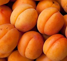 Apricots by Mitchel Whitehead