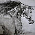 Horse running by Steve Osment