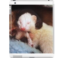 Monty and Mochi iPad Case/Skin