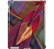 Arrow of Color Ipad iPad Case/Skin