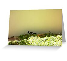 Magpie Three - 16 11 12 Greeting Card