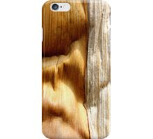 Desert Canyons iPhone Case/Skin