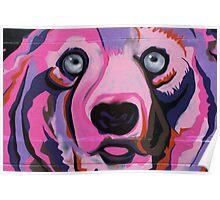 Melbourne Graffiti Street Art Pink Bear Poster