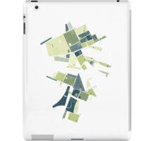 The Lower Field iPad Case/Skin