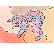 Colour Cat Original Drawing Photographic Print