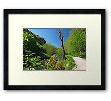 Dove Valley, Beside the River  Framed Print