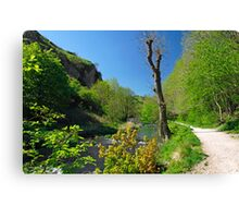 Dove Valley, Beside the River  Canvas Print