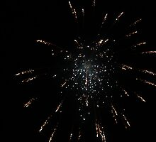 The End of the Firework by Marella May Rogerson