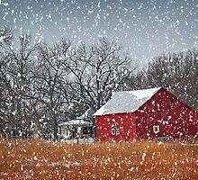 Red Barn in Snow by Sharlotte Hughes
