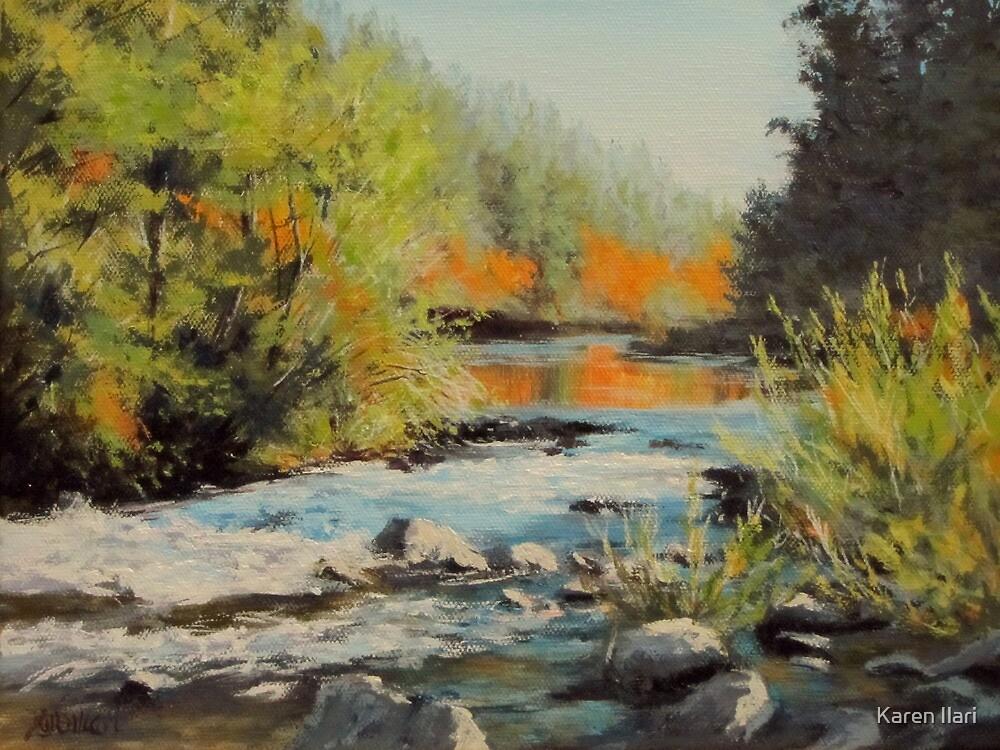 Swiftwater Autumn by Karen Ilari