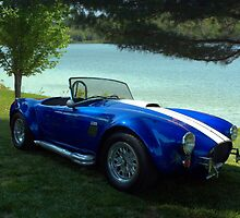 1966 Shelby Cobra Replica by TeeMack