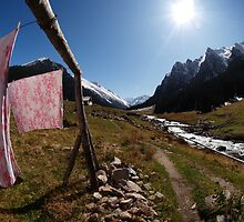 Mountain Fresh Laundry by Kortney Thoma