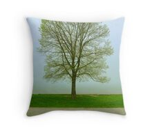 Cora's Tree- Spring 2011    1 Throw Pillow